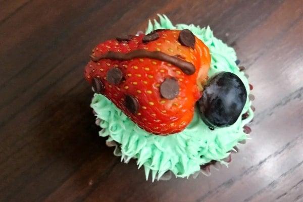 Ladybug Cupcake on a brown table
