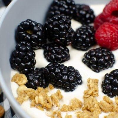 Almond Milk Yogurt in the Instant Pot